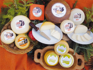 Productos lácteos - Los Caserinos